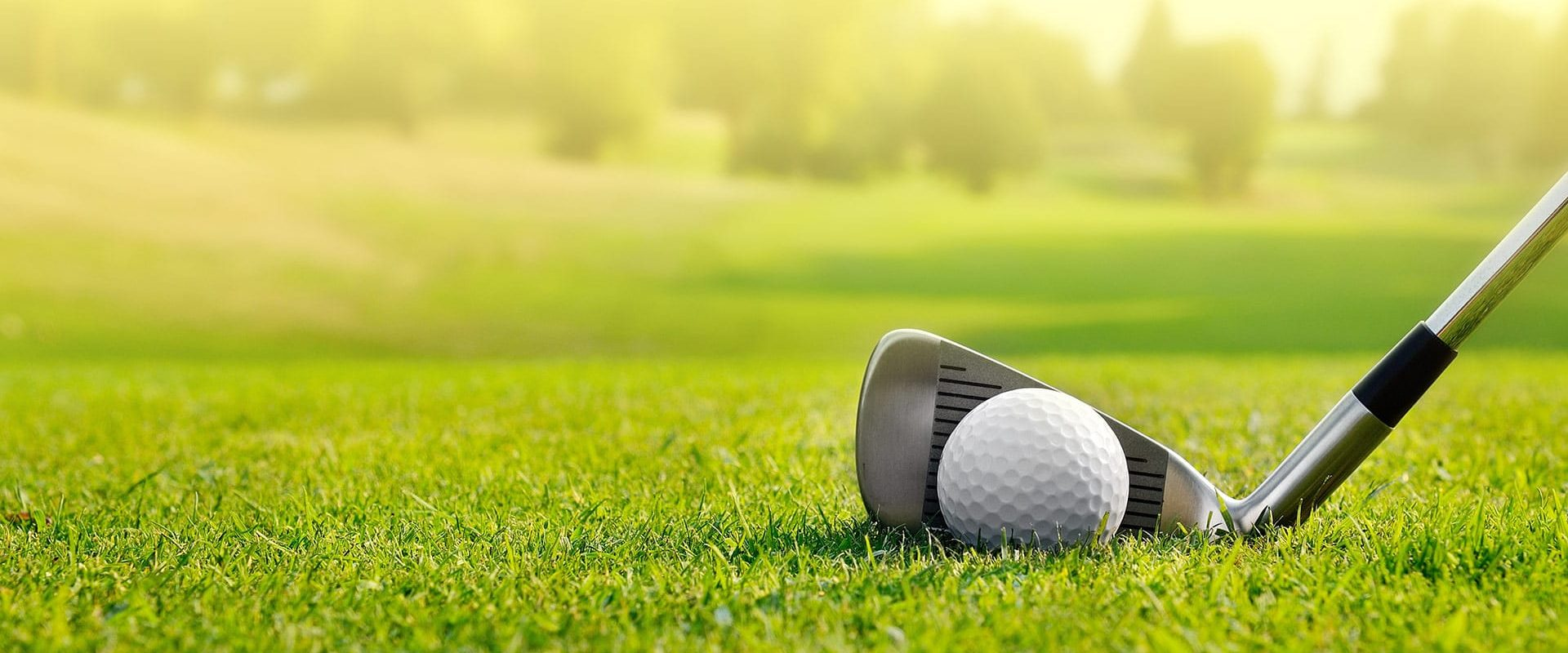 golf ball and club on golf course