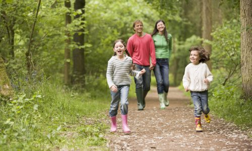 Families walking through springtime wood